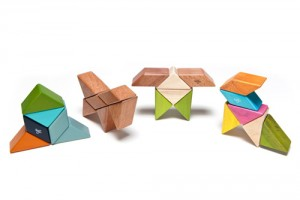 Tegu : The Power of a Wooden Block
