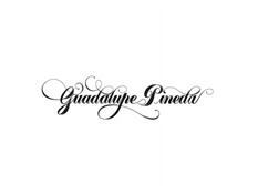 logos-guadalupe