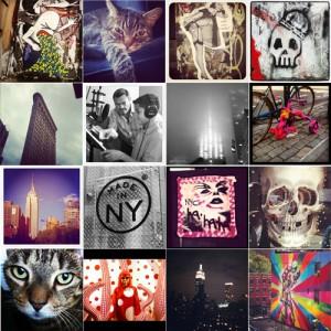 Instagram Top 7 from Alfalfa New York