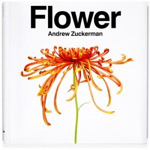 Andrew Zuckerman's Fabulous Flowers