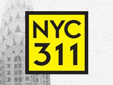 dial 311 alfalfa studio new york branding