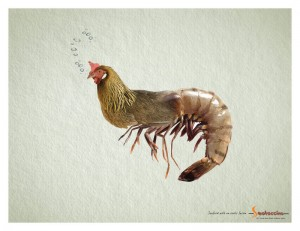 Wacky Animal Hybrids in Your Own Plate