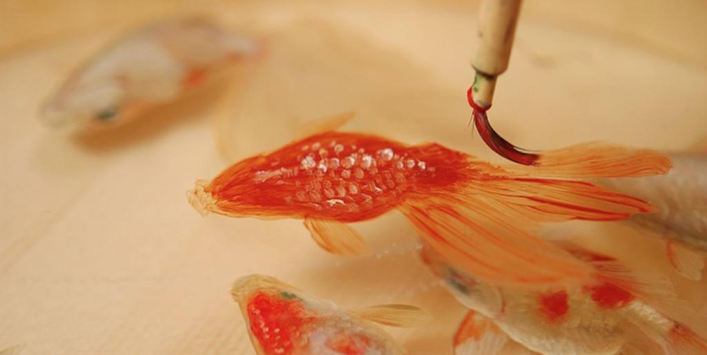 1_Goldfish Salvation_Riusuke Fukahori
