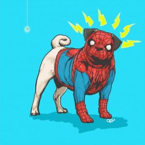 Canine Superheroes