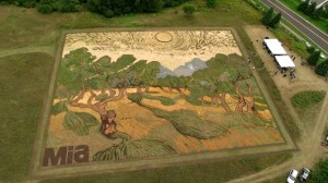Van Gogh's 'Olive Trees' Recreated in a ...