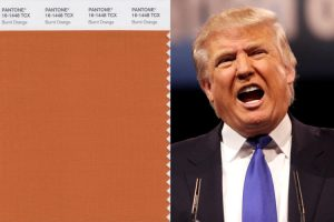 PANTONE 16-1449: Gold Flame or Donald Tr...