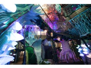 Meow Wolf: A New Arts Space Owned by Aut...
