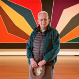 Frank Stella: The Power of Color
